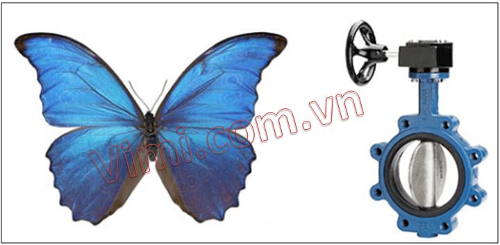 Tai sao gọi là van bướm