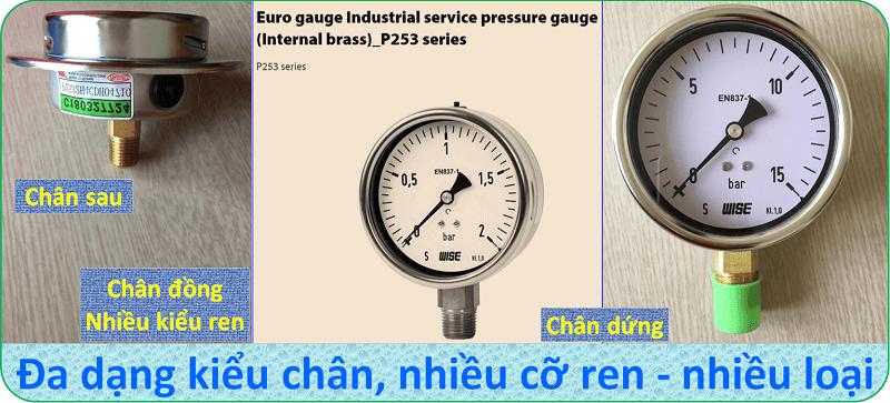 Đồng hồ đo áp suất P253-8