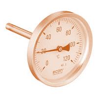Đồng hồ nhiệt độ chân sau