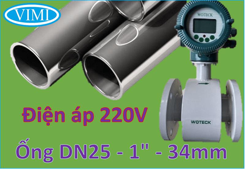 đồng hồ đo nước woteck dn25 6