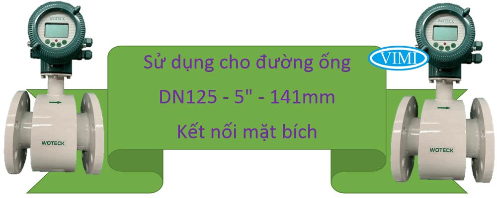 Đồng hồ đo nước woteck dn125