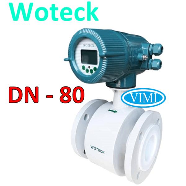 đồng hồ đo nước woteck dn80 8