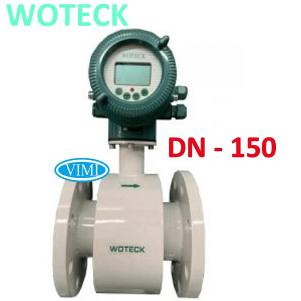 đồng hồ nước woteck dn150 1