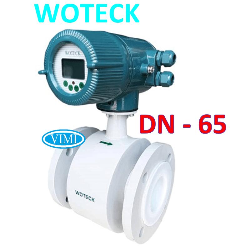 đồng hồ nước woteeck dn65 5