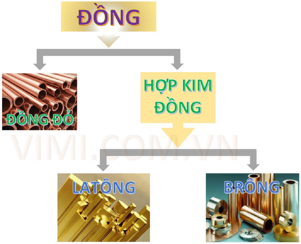 Phan loai dong