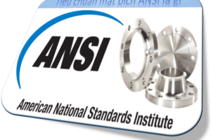 Tiêu chuẩn mặt bích ANSI là gì