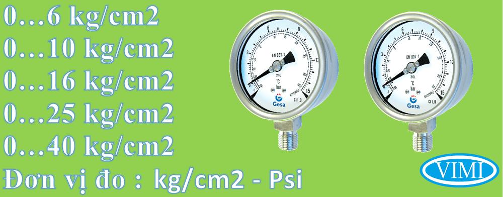 Đồng hồ đo áp suất gesa mặt 100mm 2
