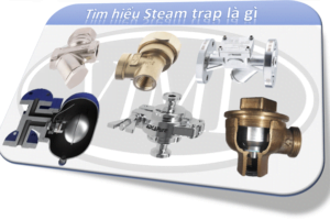 Steam trap là gì? Tên tiếng anh các loại bẫy hơi