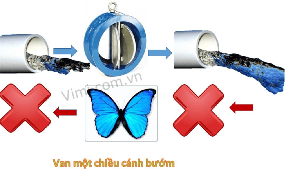 van 1 chiều cánh bướm 05