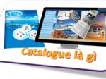 Catalogue là gì
